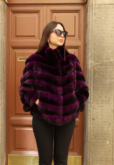 Chinchilla Purple