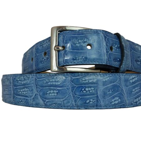 Blue Crocodile Back Belt